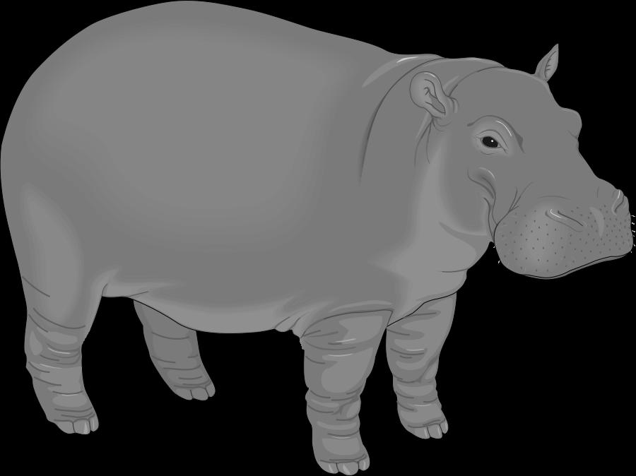 Hippo clipart cartoon. Clipartblack com animal free