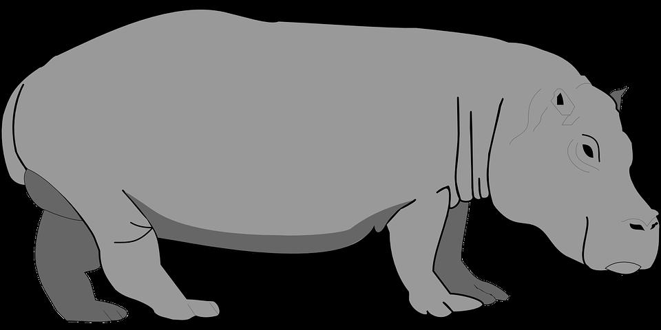 Hippo clipart gloria. Gambar free on dumielauxepices
