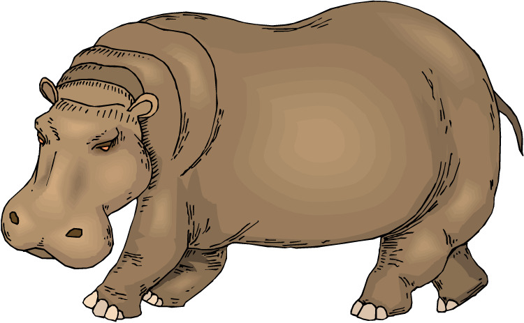 Free. Clipart images hippo