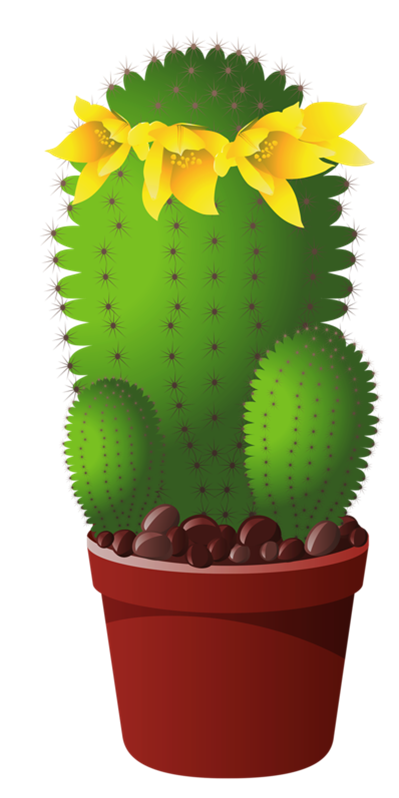 Picture my garden valley. Plant clipart potted plant