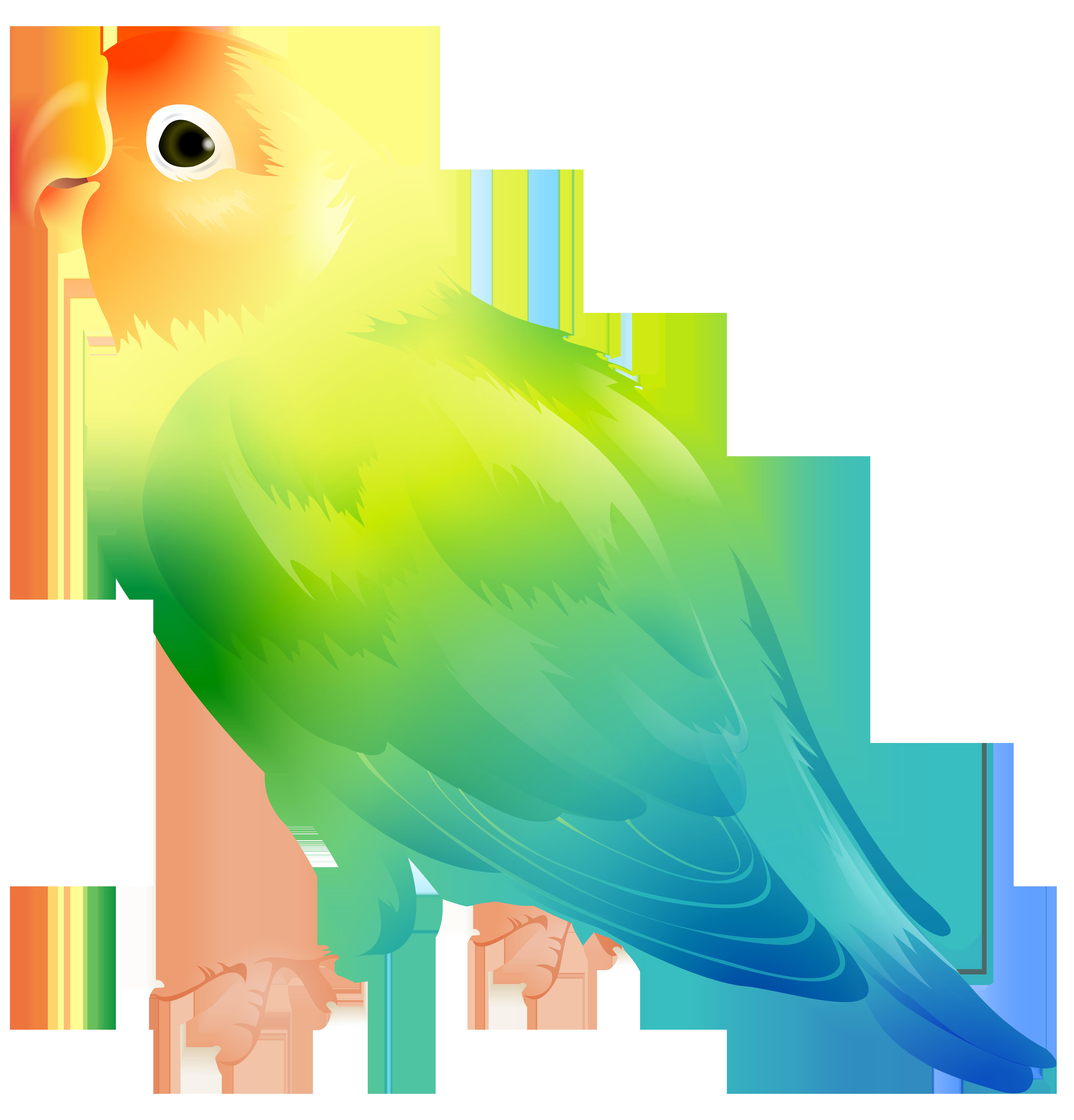 Bird png clip art. Parrot clipart parrot feather