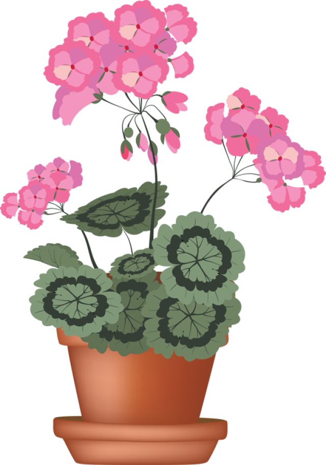 Clip art of beautiful. Dig clipart flower