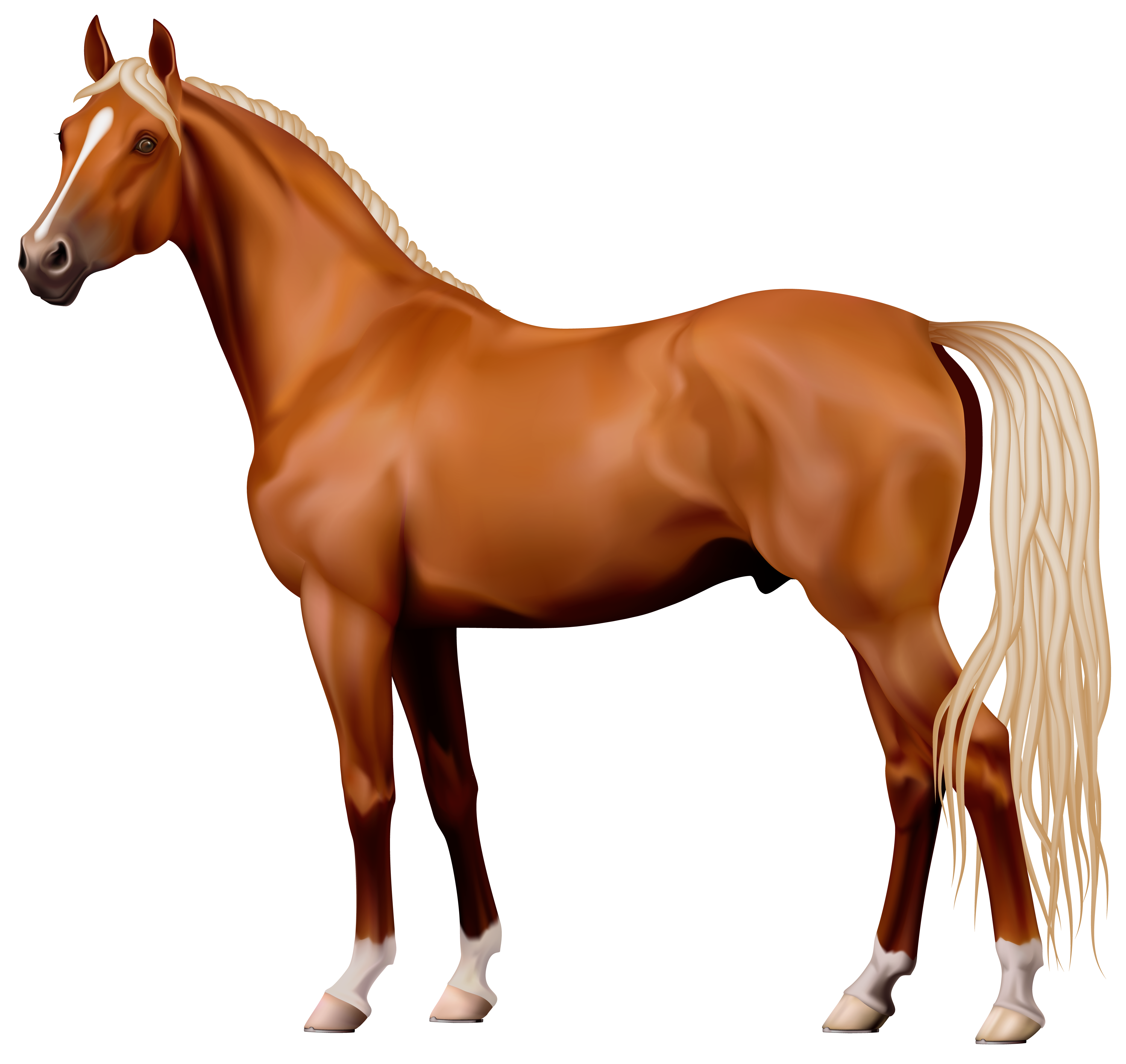 Brown png best web. Clipart horse