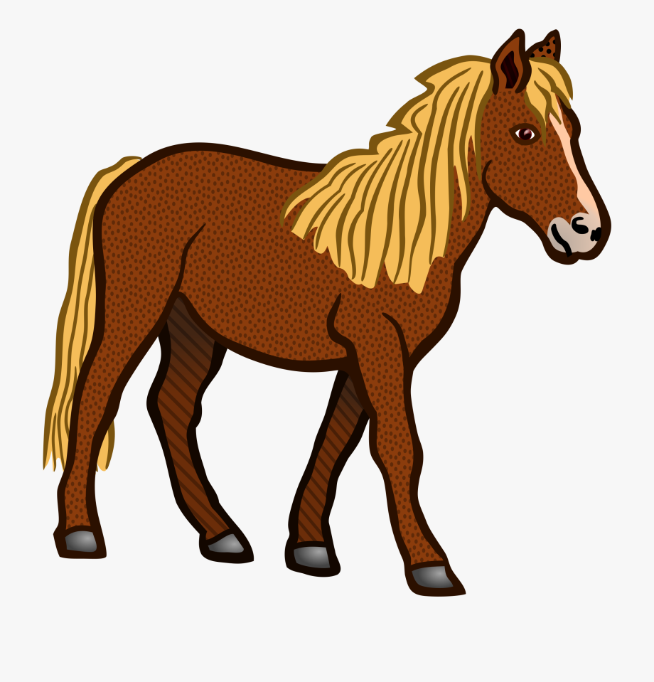 Horses clipart equine. Horse coloured png free