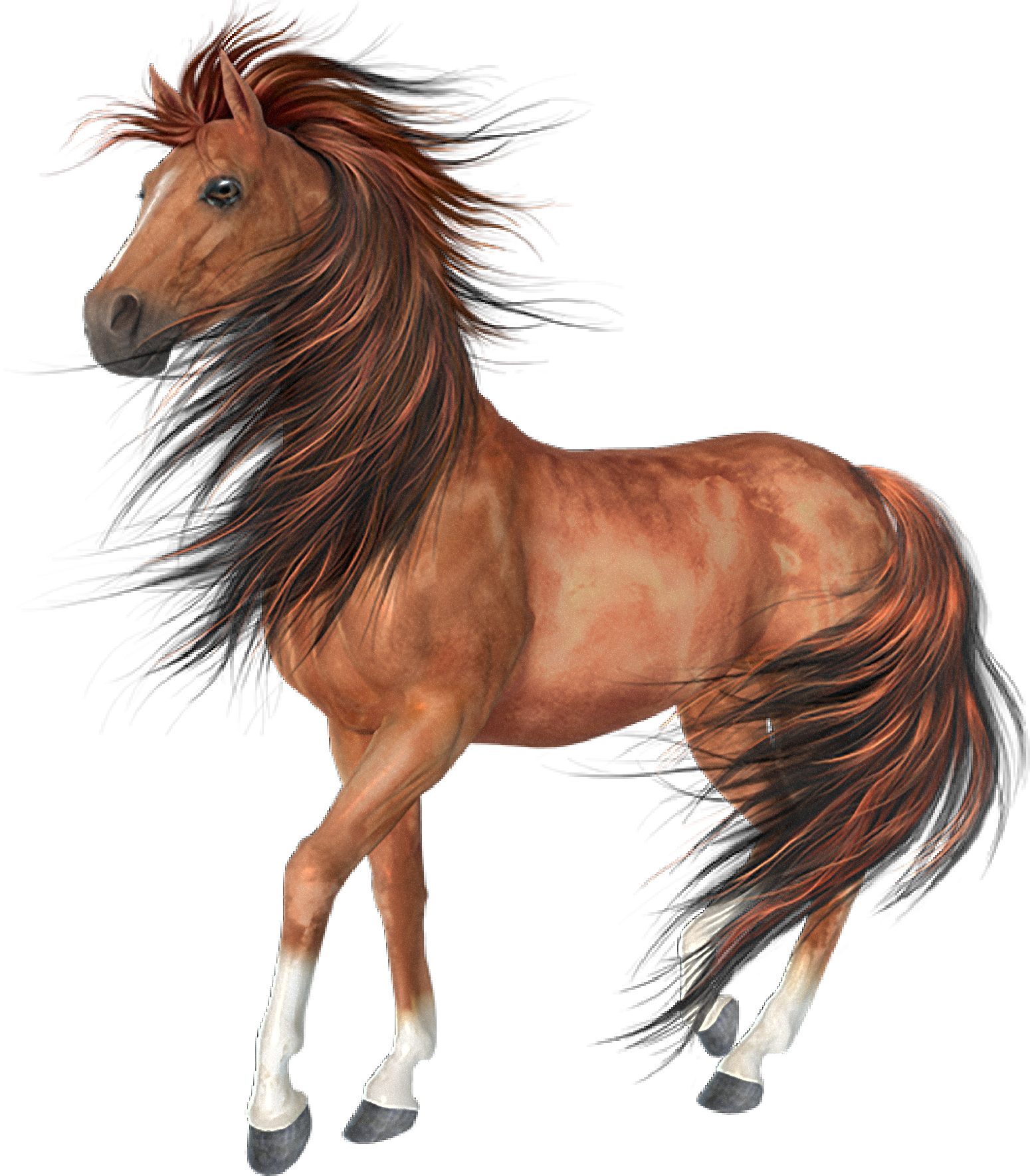Akhal teke black clip. Clipart horse arabian horse