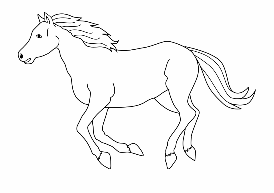Black running horse of. Horses clipart equine