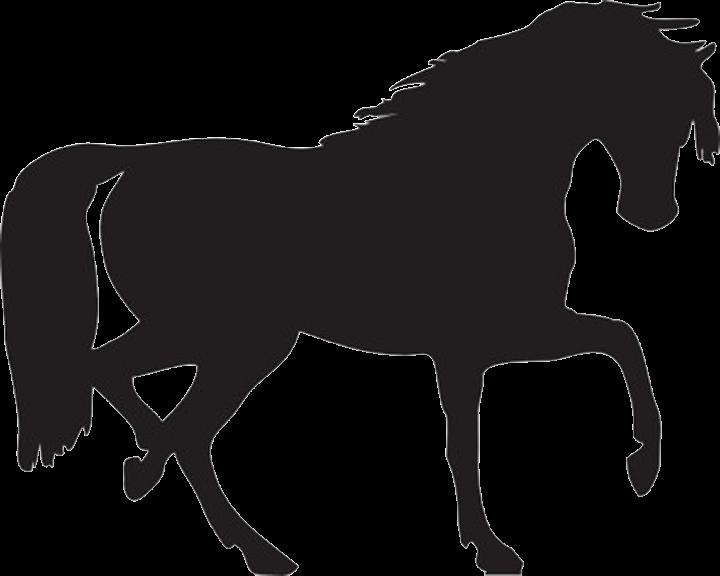 Musings at minkiewicz studios. Clipart horse bust