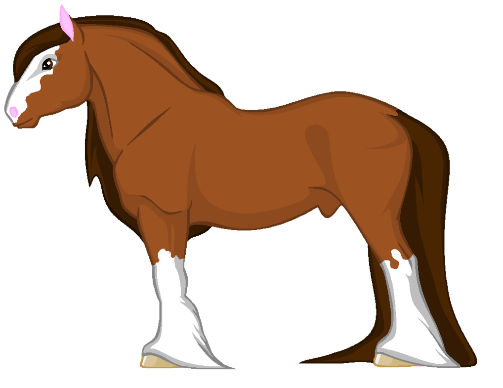Shire horse for sale. Horses clipart stable