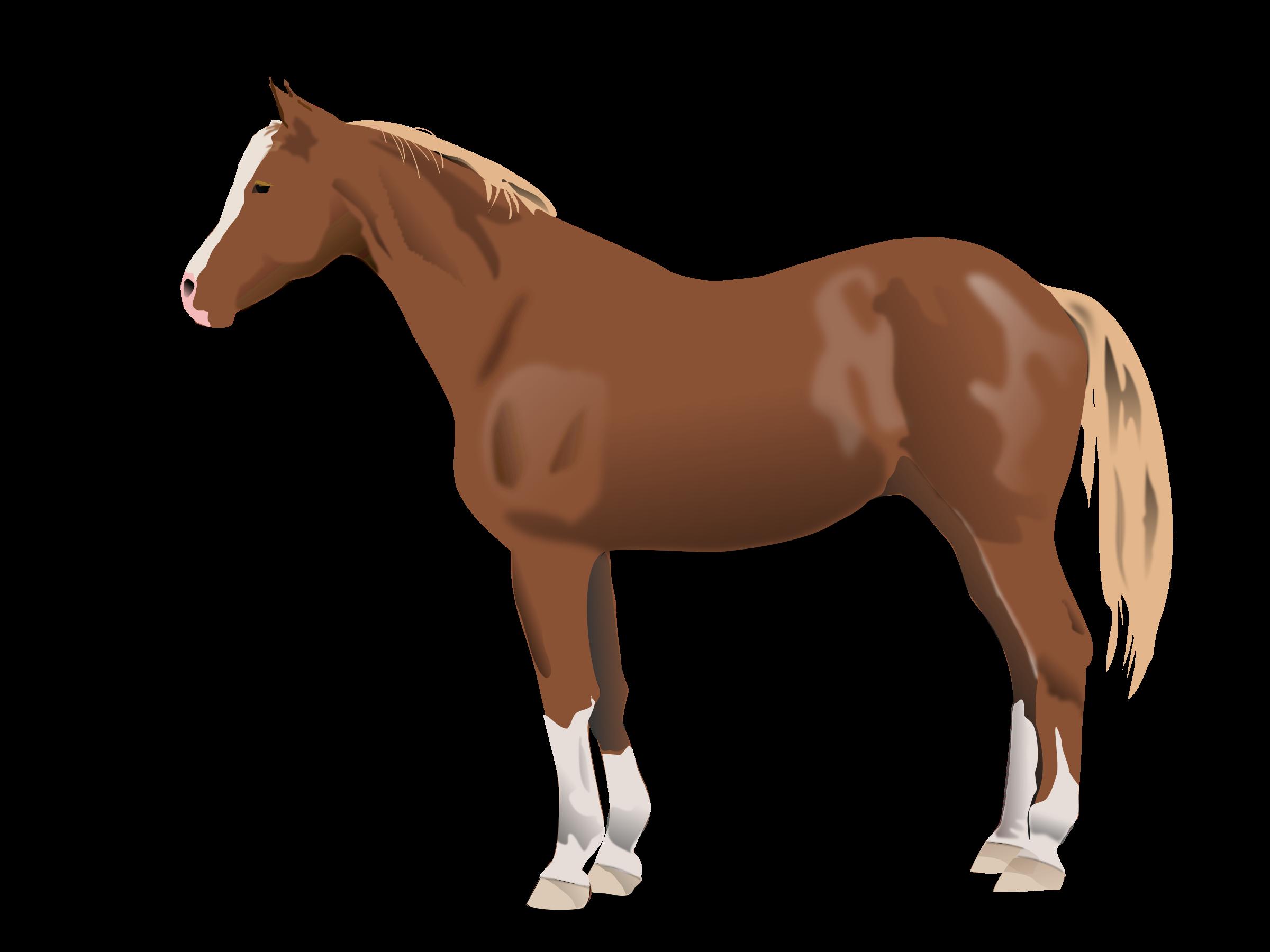 . Clipart horse farm animal