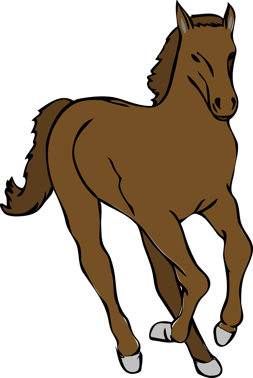 Horse and at getdrawings. Horses clipart foal
