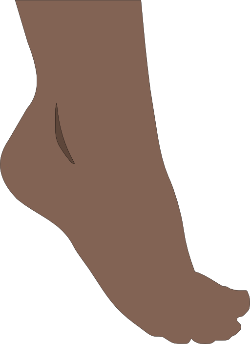Feet clipart foot heel. I royalty free public