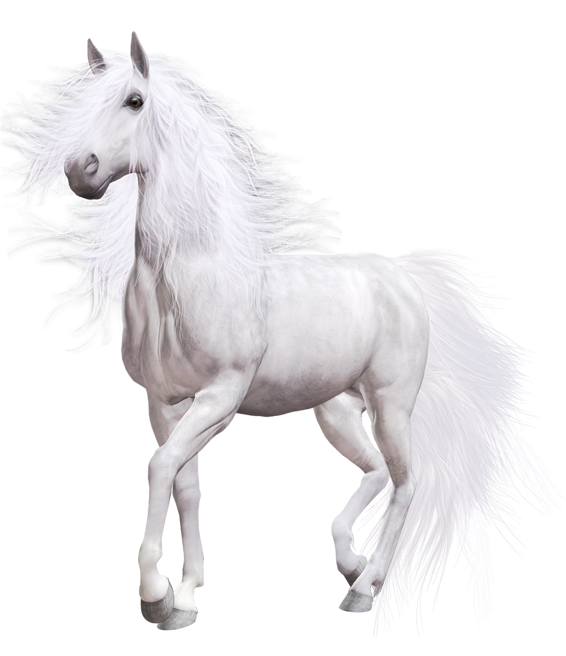 White png clip art. Horse clipart transportation