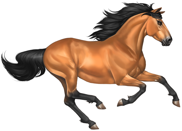 Mustang clipart transparent background. Galloping horse png free