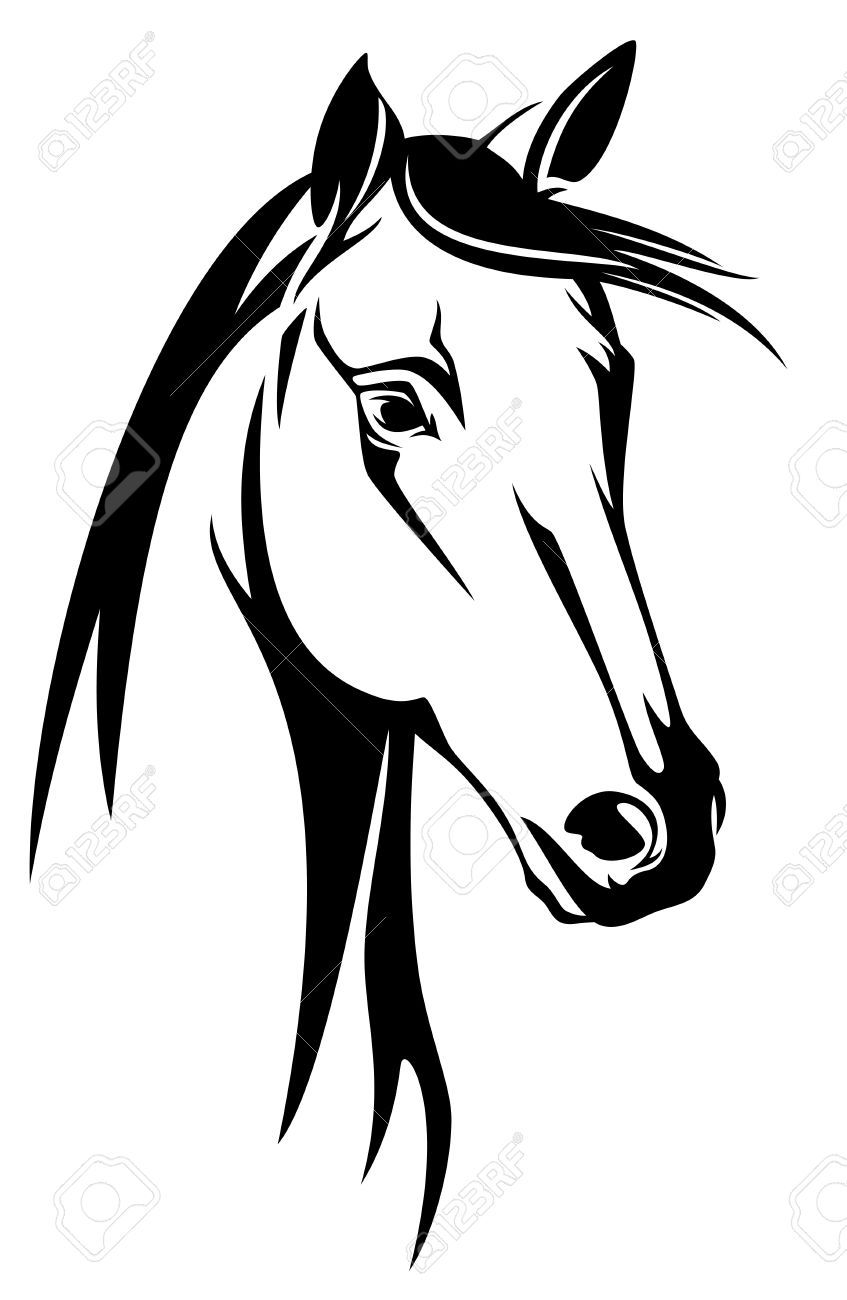 Horse clipart horse head. Stock vector drawings drawing