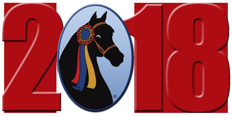 Clipart horse morgan horse. Latest news the grand
