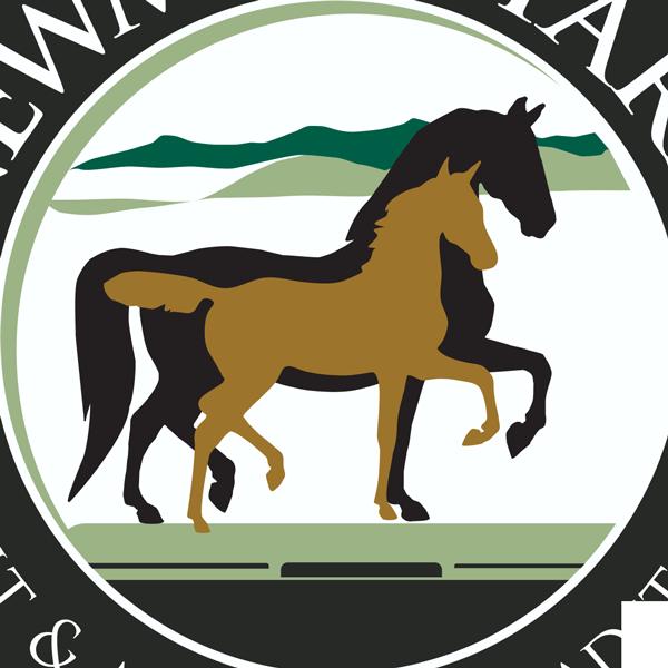 Clipart horse morgan horse. Latest news newmont morgans