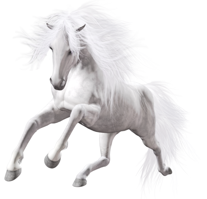Clipart horse pole bending. Transparent white art horses