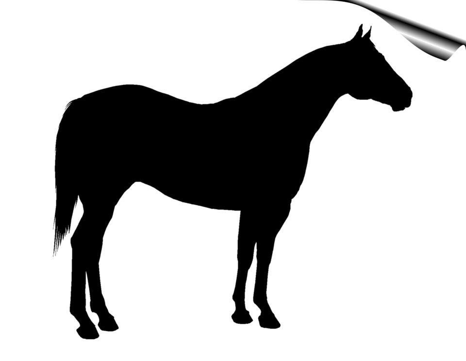 Image result for silhouette. Clipart horse quarter horse