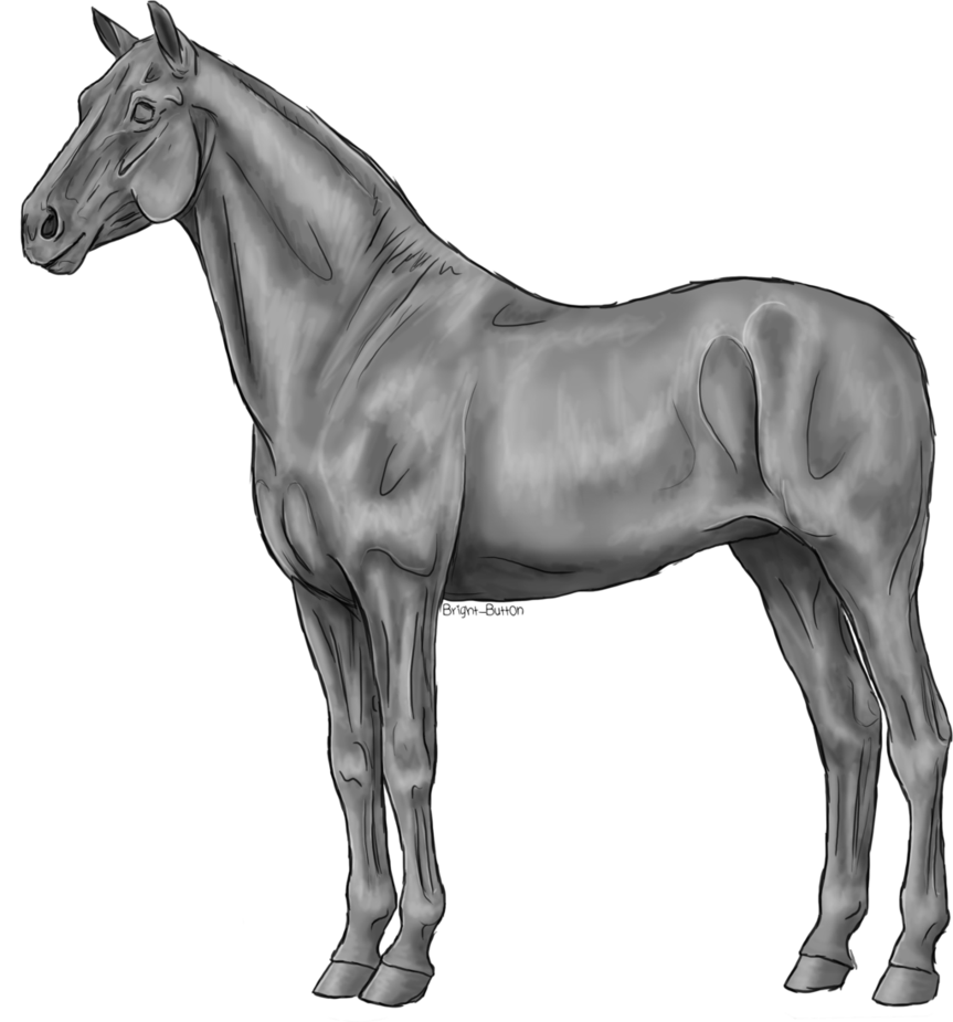 Free greyscale by bright. Clipart horse standing
