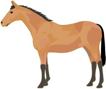Clipart horse standing. Clip art library