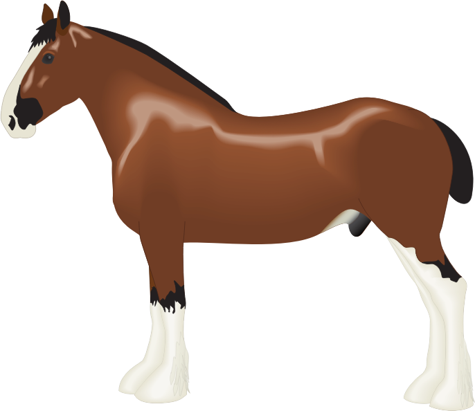 Clipart horse standing. Eft for depressed shire