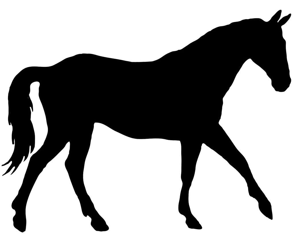 Clipart horse standing. Silhouette at getdrawings com
