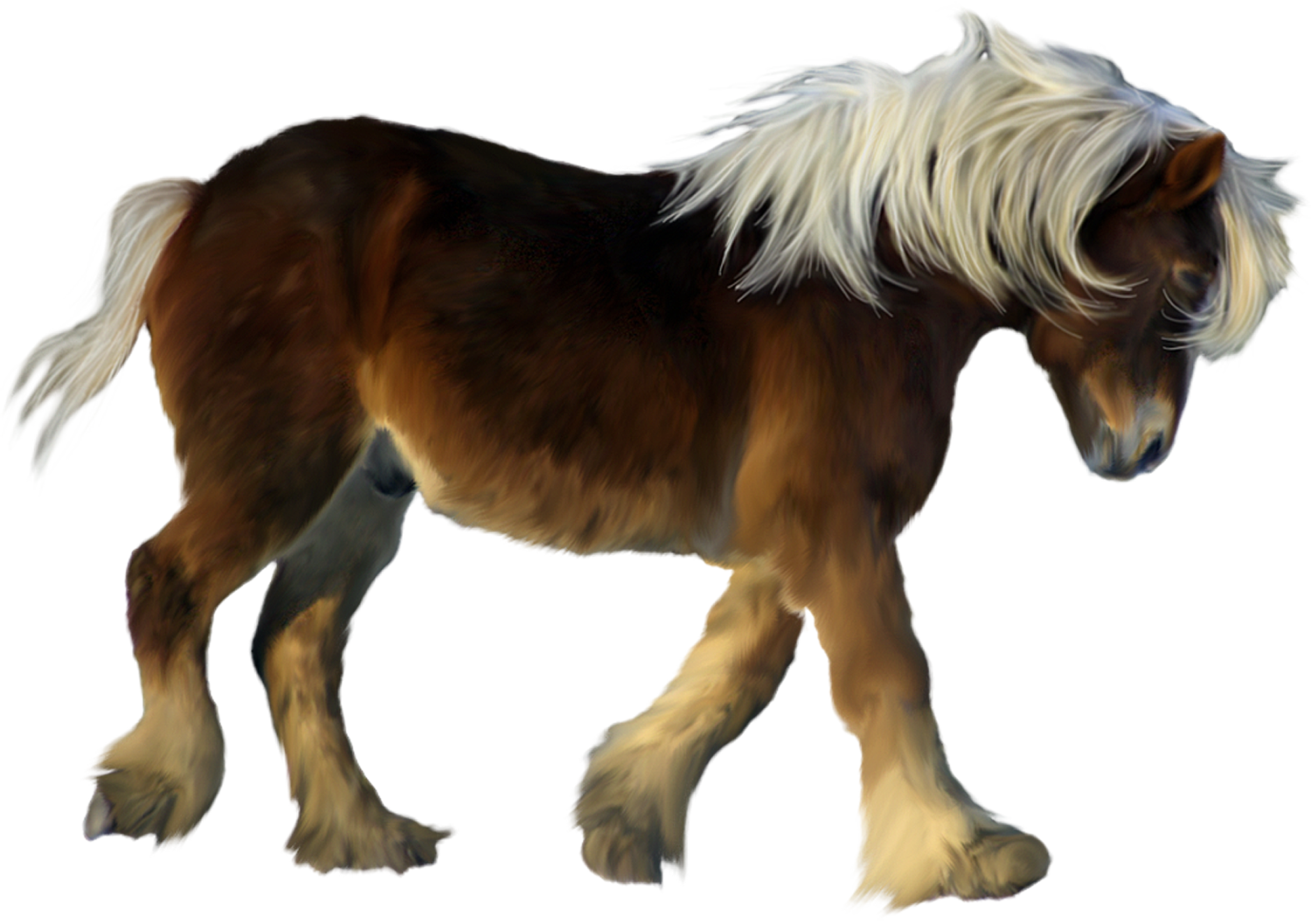Horses clipart therapy. Brown pony d png