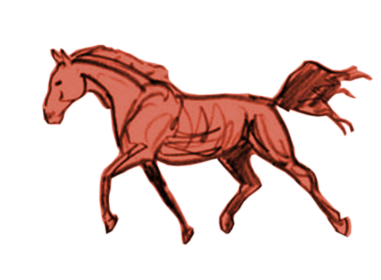 Clipart horse trot. Certified practitioner serenity farms