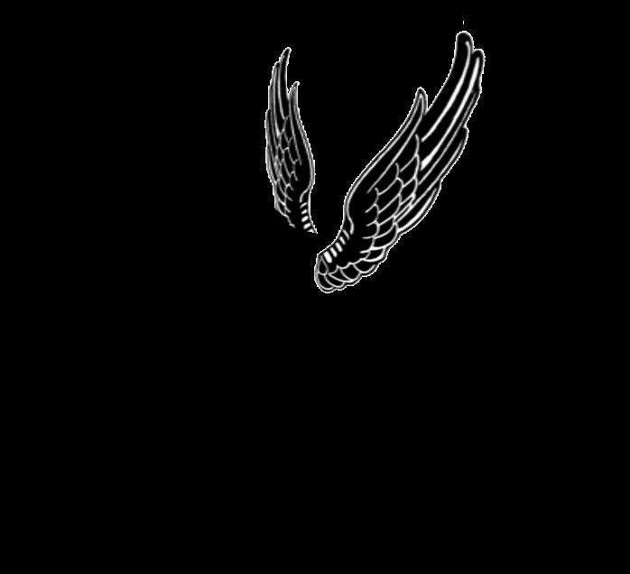 Silhouette winged by viktoria. Clipart unicorn shape