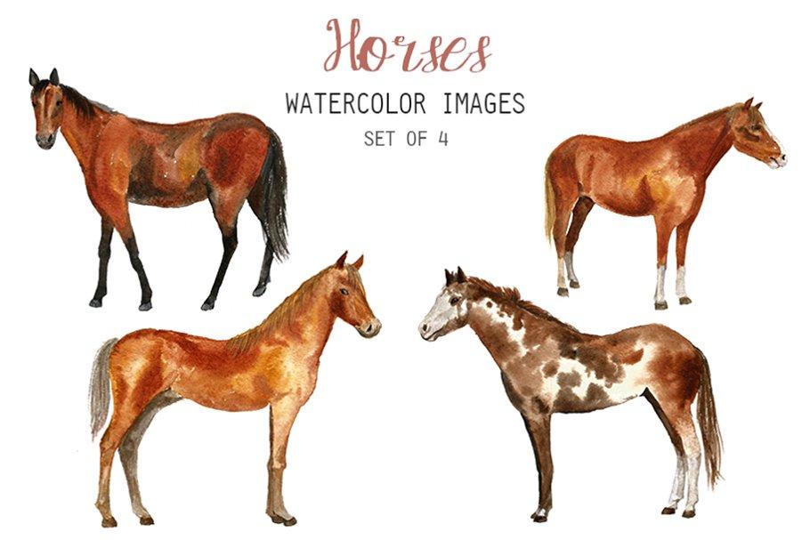 Clipart horse watercolor. Horses illustrations creative market