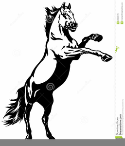 Clipart horse wild horse. Mustang free images at