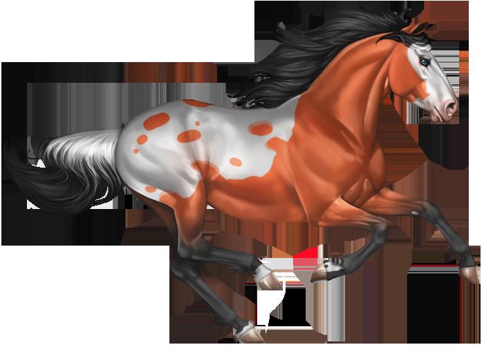 Mestengo sim it is. Clipart horse wild horse