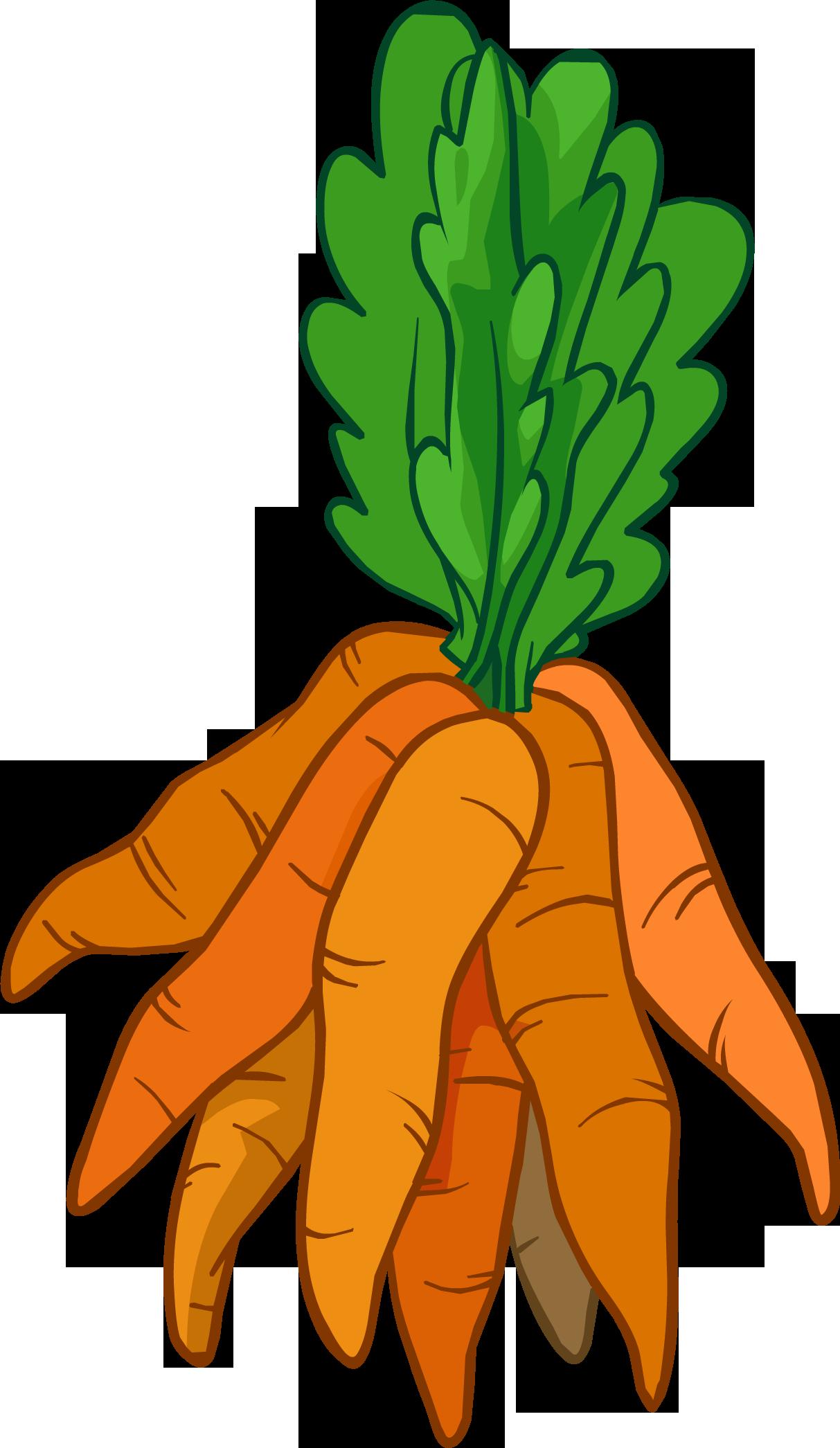 Pin by luke on. Garden clipart carrot
