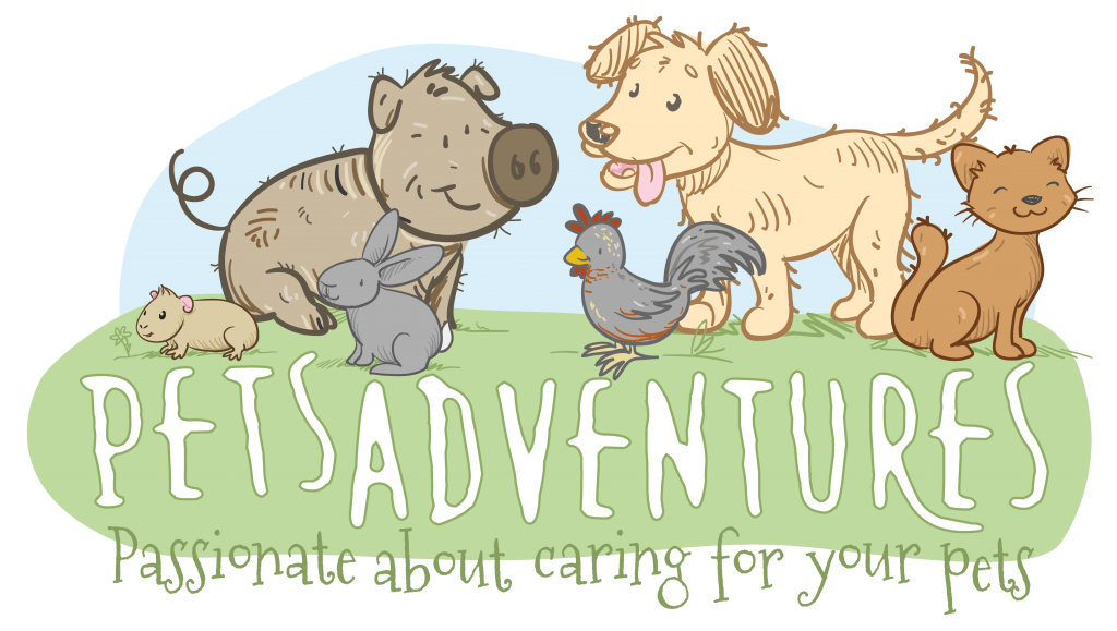 Pets adventures in worcestershire. Pet clipart companion