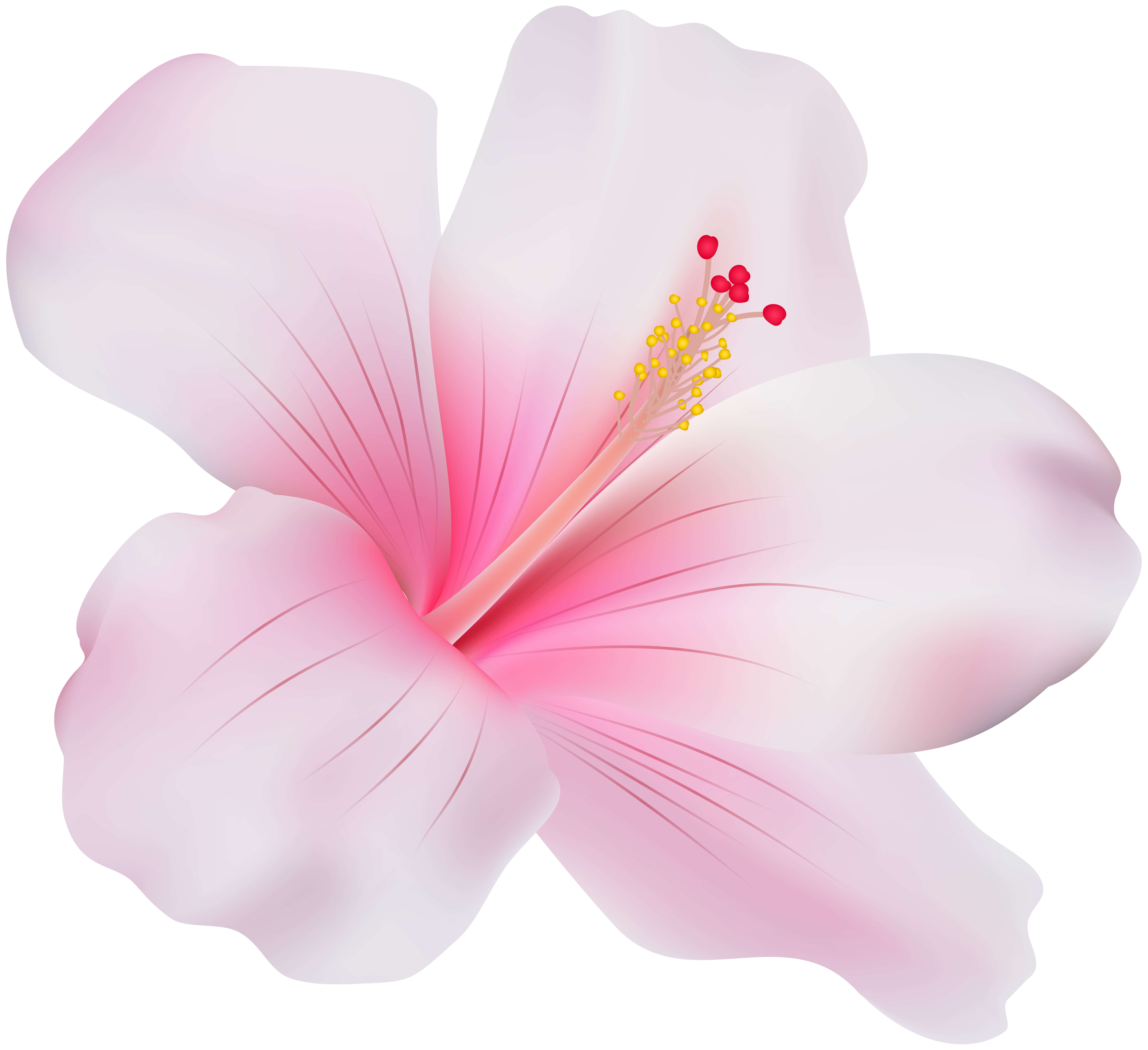 Pink clip art best. Hibiscus flower png