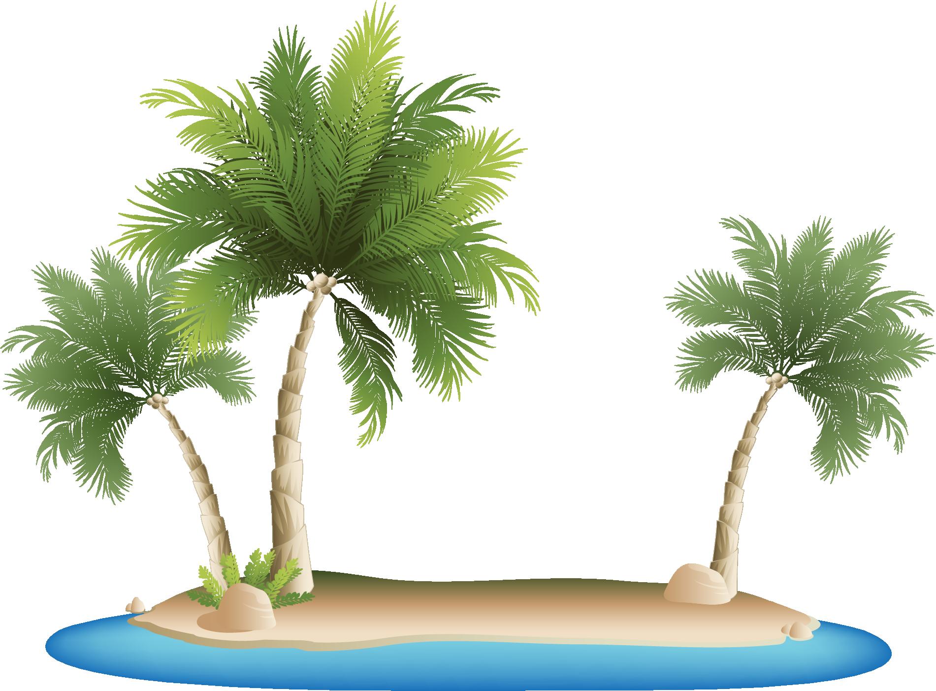 Watermelon clipart tropical. Palm islands resort clip