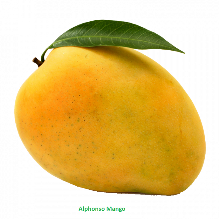 Png download free photo. Clipart images mango