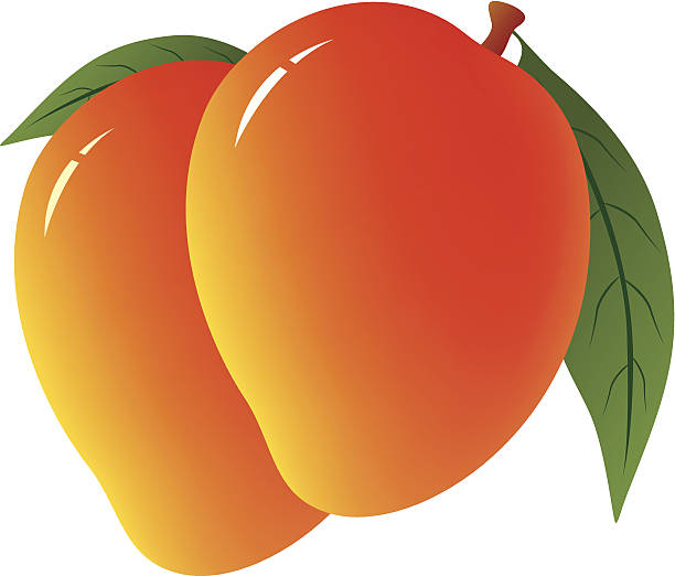 Free download clip art. Mango clipart national