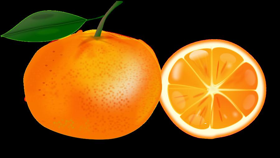 Orange clipart orange fruit. Free