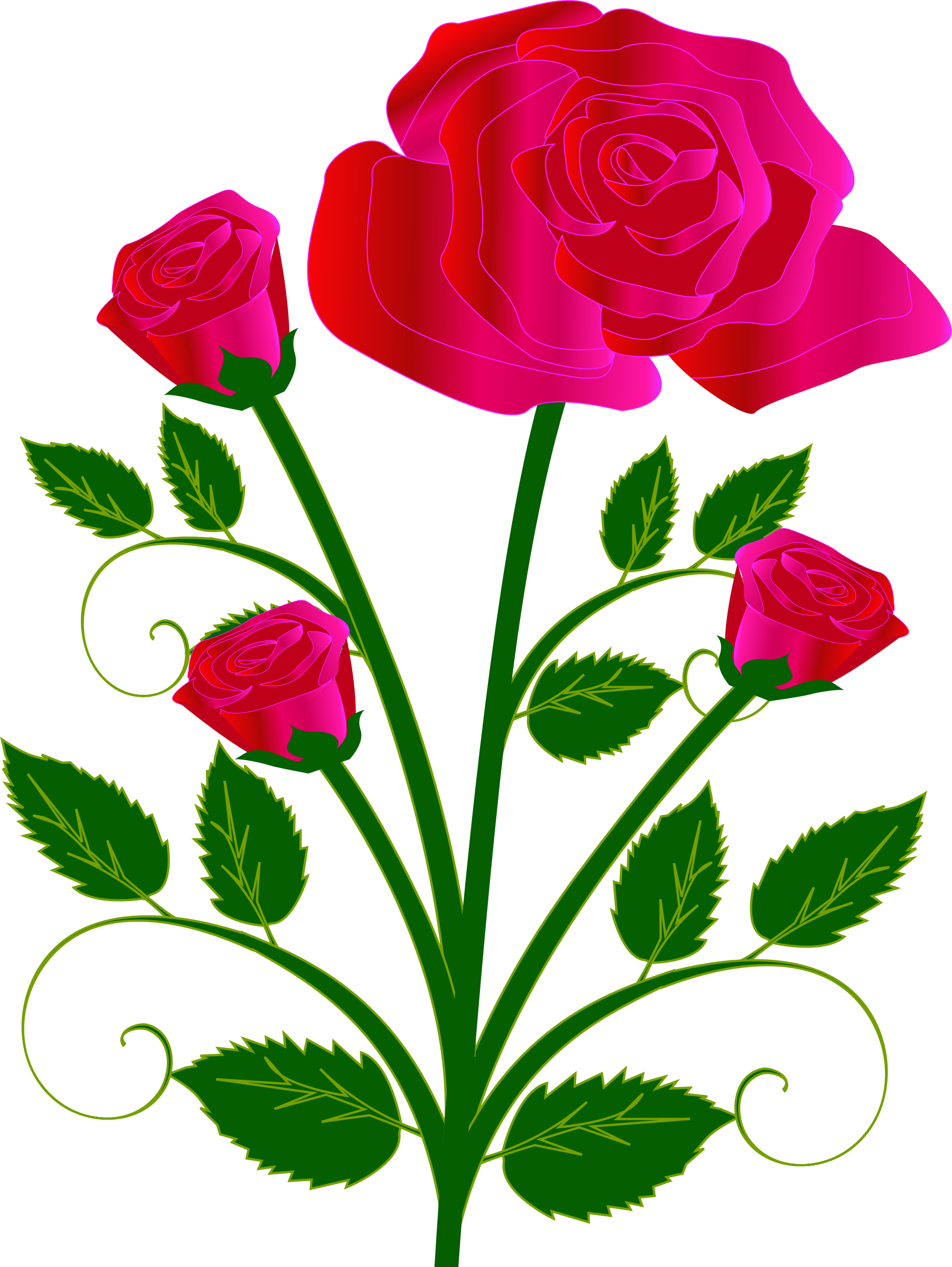 Rose big image png. Clipart roses easy