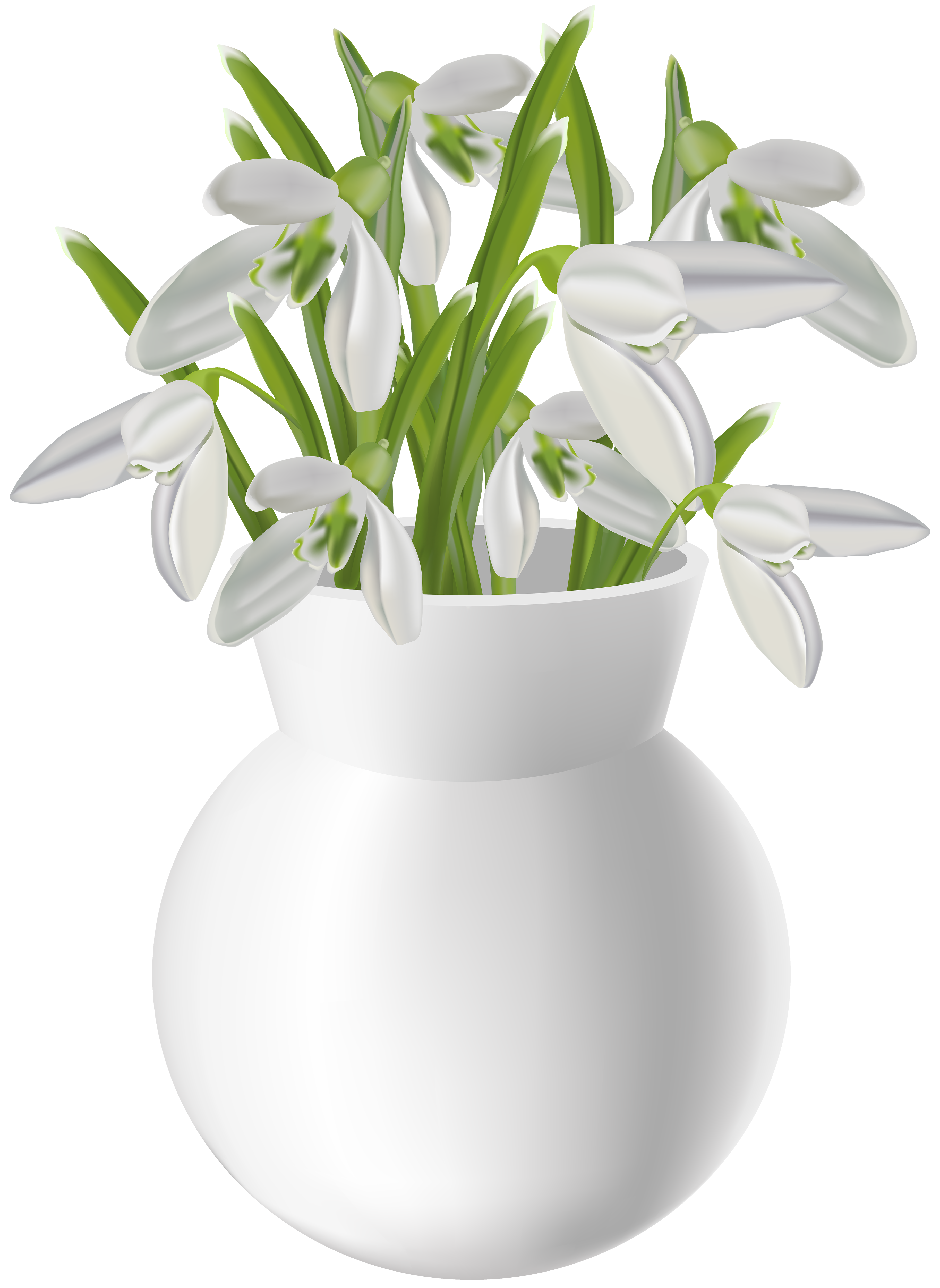 Vase clipart gold. With snowdrops transparent png