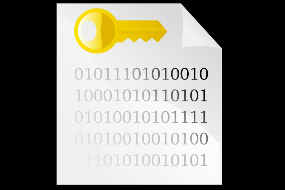 Keys clipart password. Why nitrokey is more
