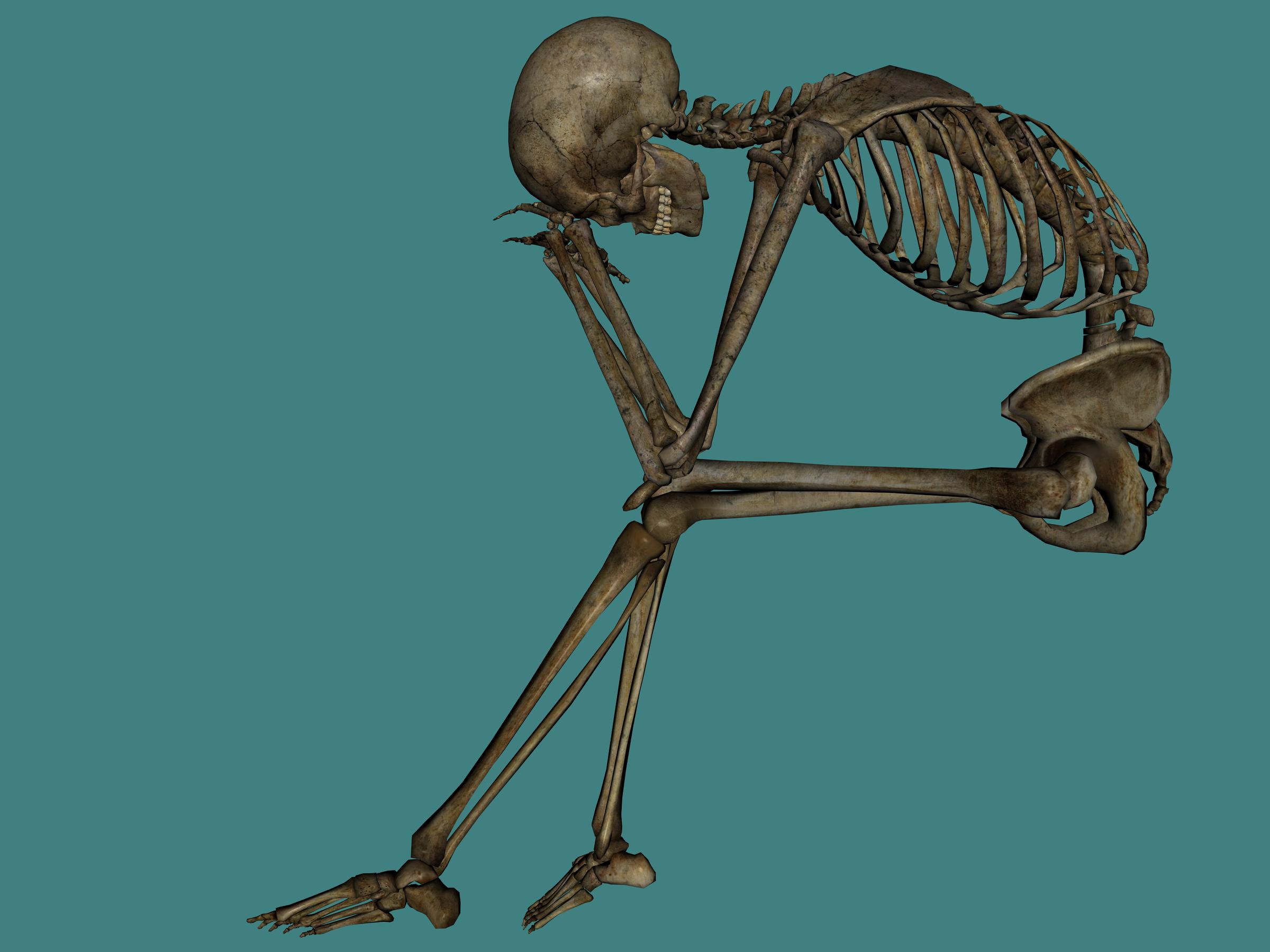 Human ten isolated stock. Pigs clipart skeleton