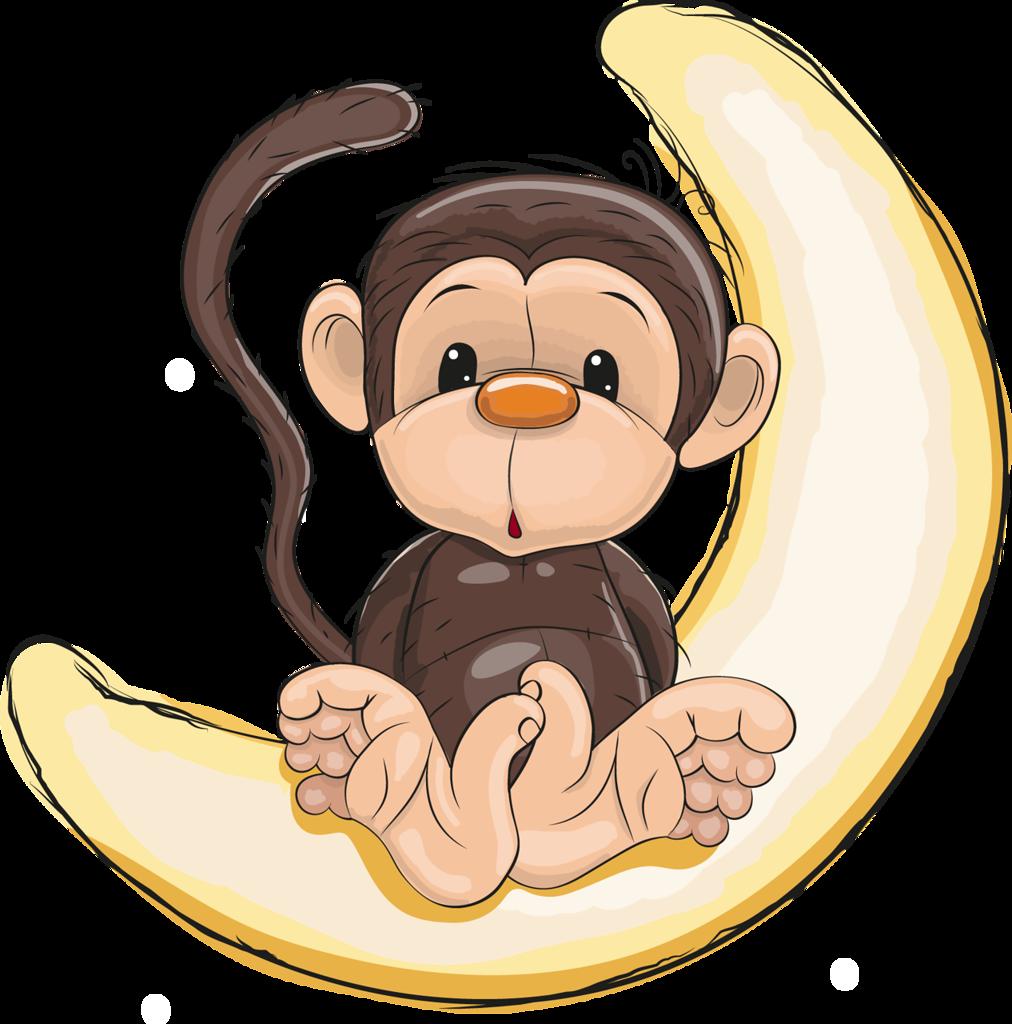 png pinterest zoos. Kids clipart monkey