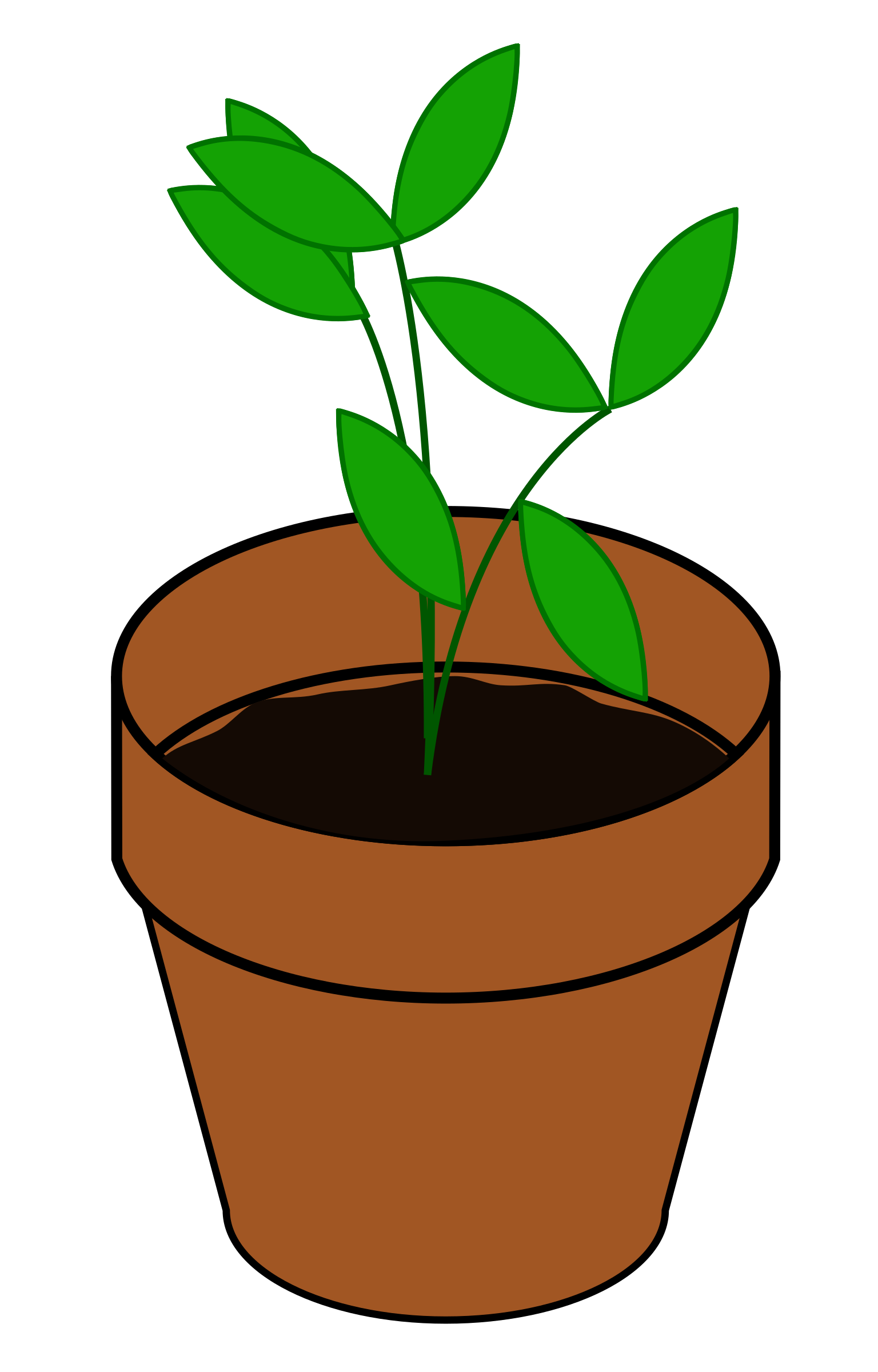 Clipart kids plant. Terracotta big image png
