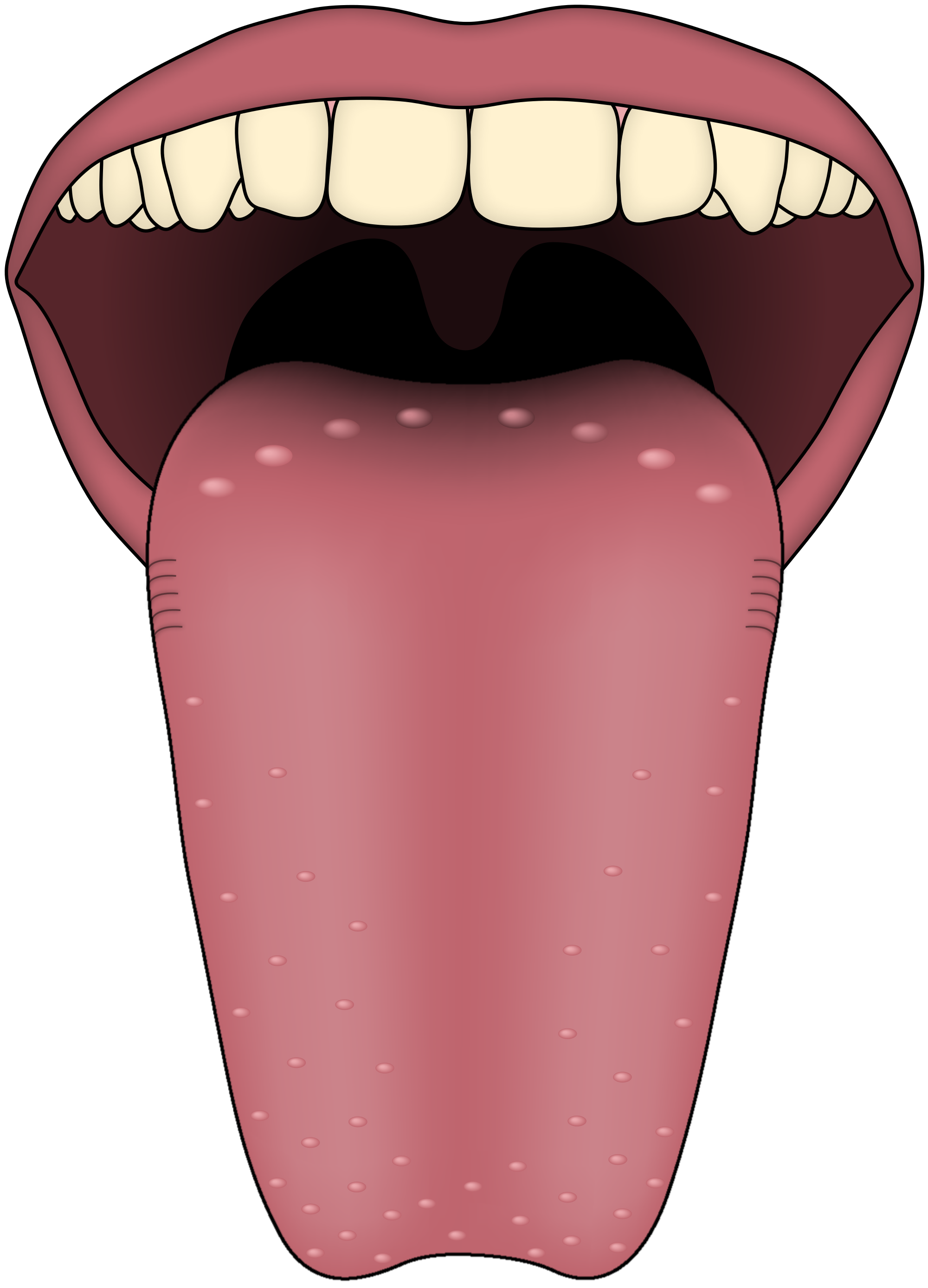 collection of tongue. Taste clipart toung