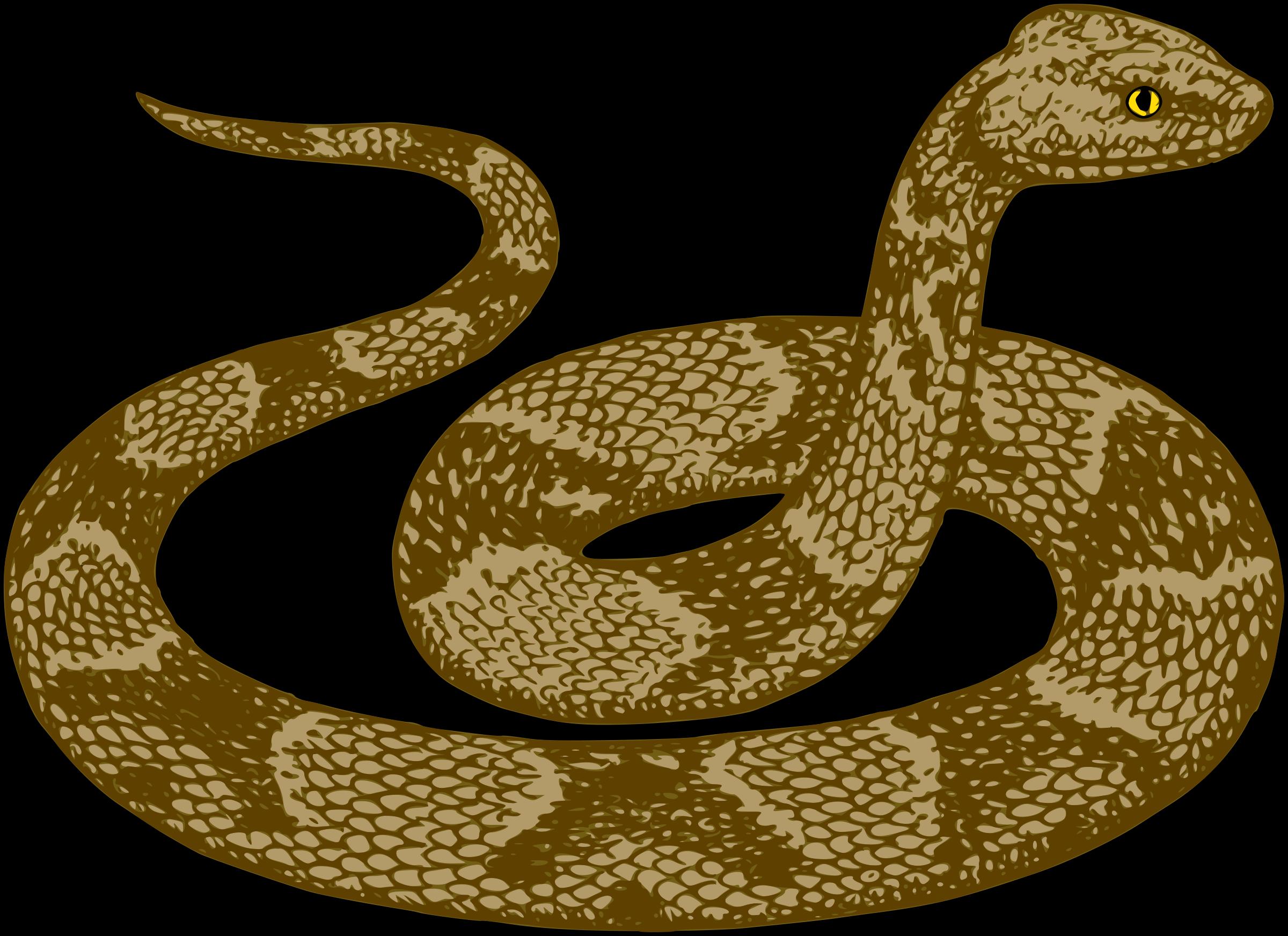 collection of high. Snake clipart anaconda