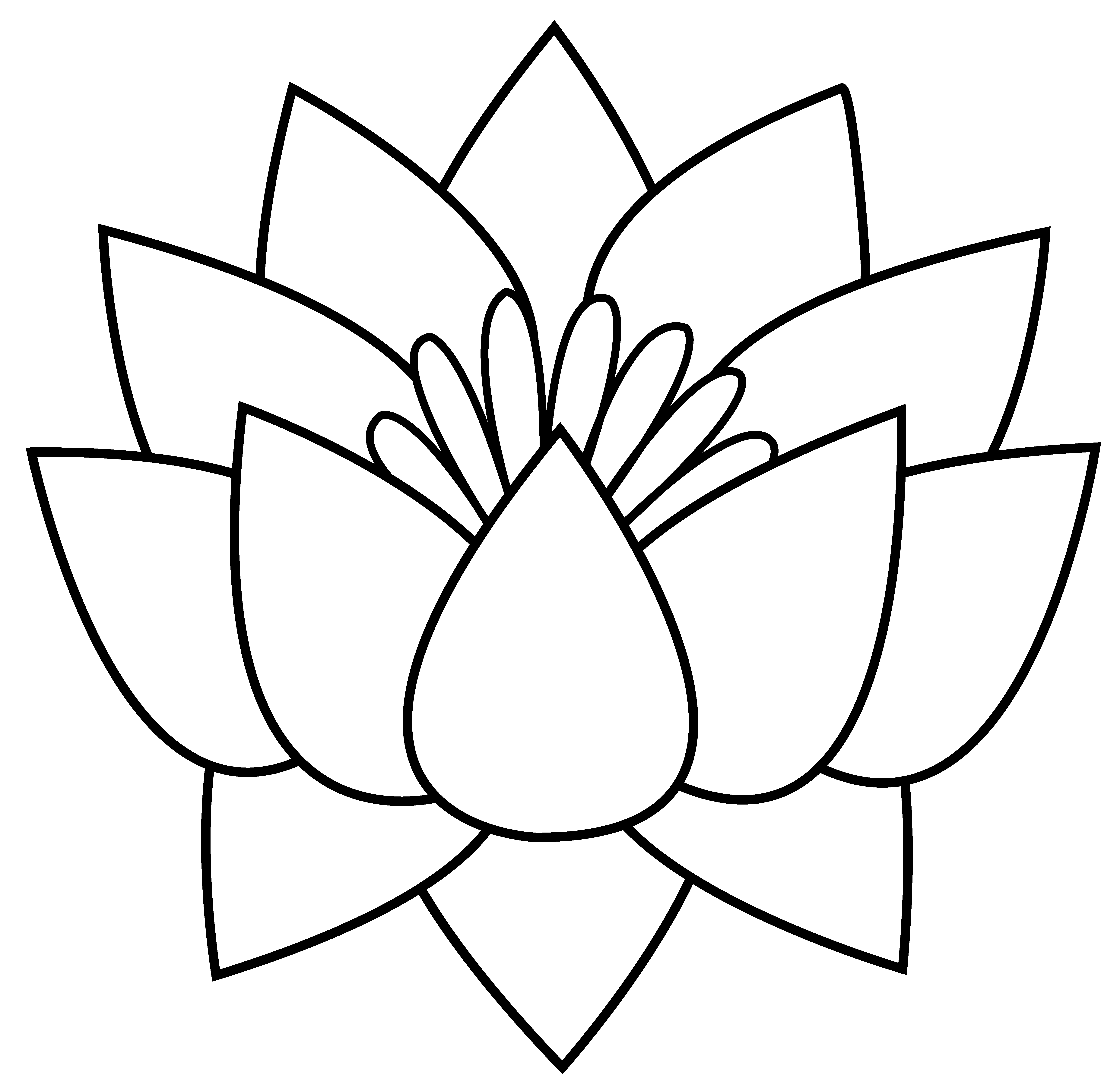 Flowers black and white. Lotus clipart olu
