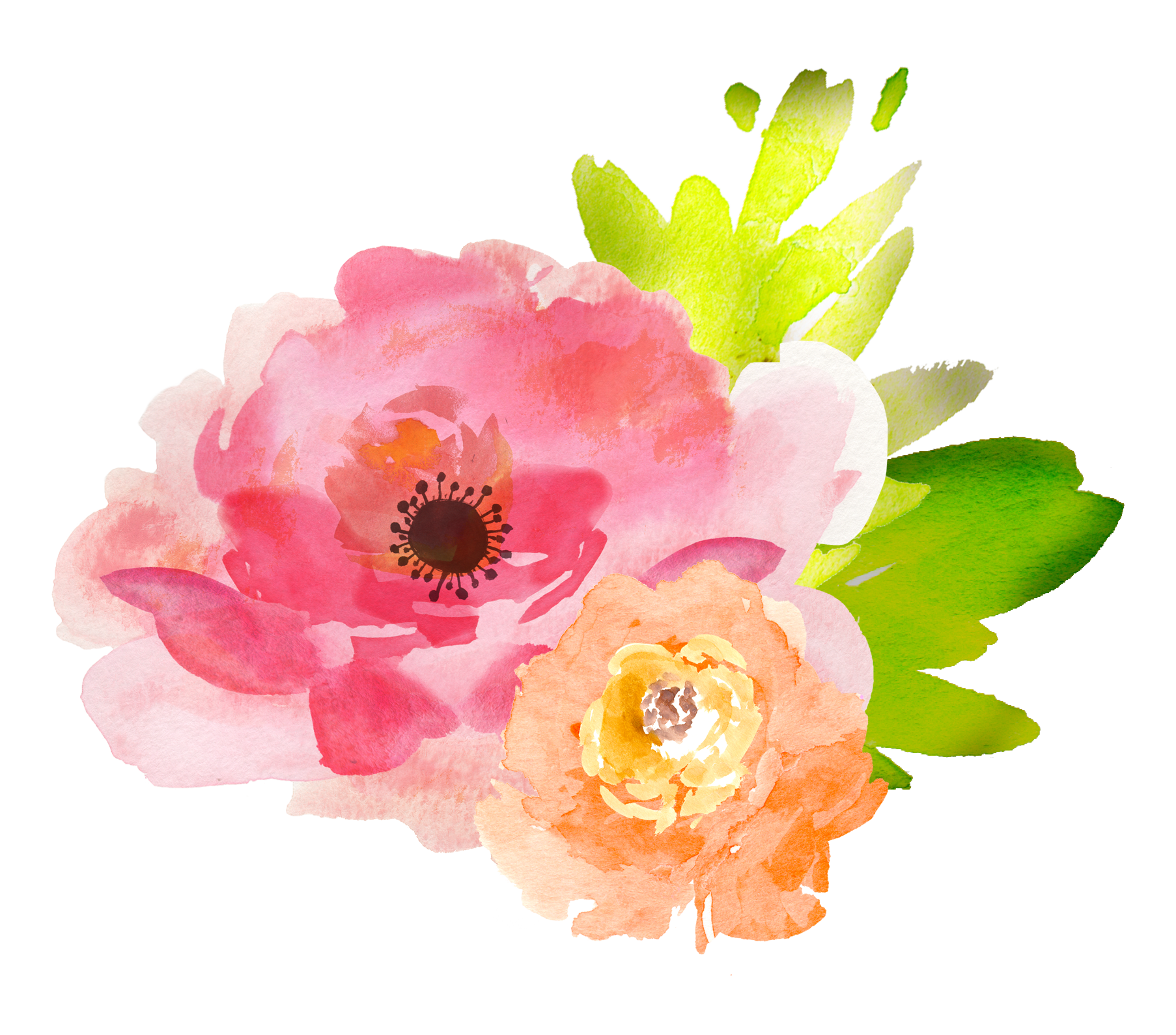 Free watercolor floral elements. Youtube clipart flower