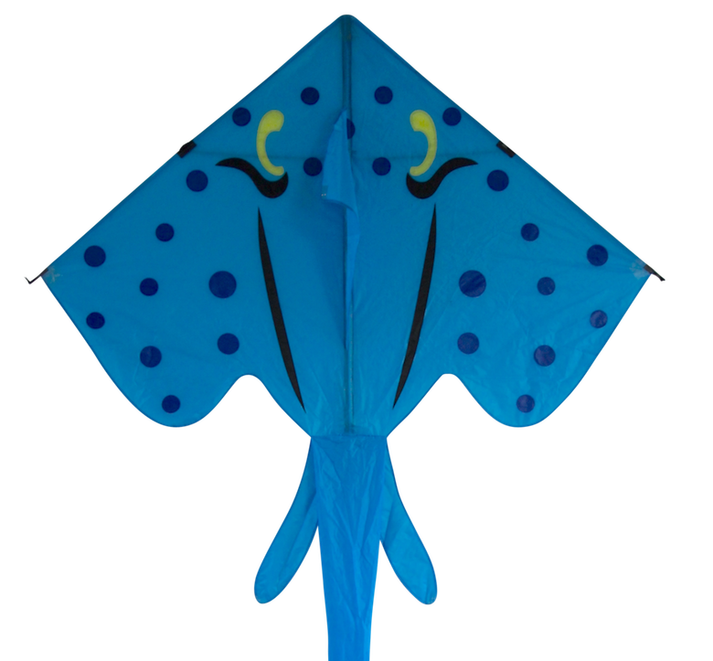 Kite blue kite